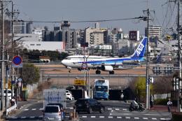 sukiさんが、伊丹空港で撮影した全日空 737-881の航空フォト(飛行機 写真・画像)