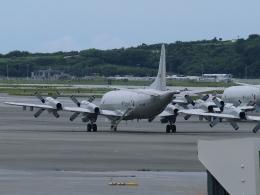 FT51ANさんが、那覇空港で撮影した海上自衛隊 P-3Cの航空フォト(飛行機 写真・画像)