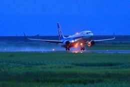 門ミフさんが、佐賀空港で撮影した全日空 737-881の航空フォト(飛行機 写真・画像)