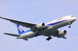 けいとパパさんが、羽田空港で撮影した全日空 777-281/ERの航空フォト(飛行機 写真・画像)