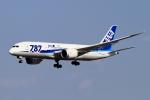 kaeru6006さんが、成田国際空港で撮影した全日空 787-8 Dreamlinerの航空フォト(飛行機 写真・画像)