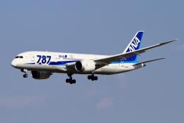 航空フォト:JA813A 全日空 787-8 Dreamliner