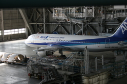 aki@飛行機ガチ勢さんが、羽田空港で撮影した全日空 A320-211の航空フォト(飛行機 写真・画像)