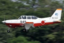 Hariboさんが、名古屋飛行場で撮影した航空自衛隊 T-7の航空フォト(飛行機 写真・画像)