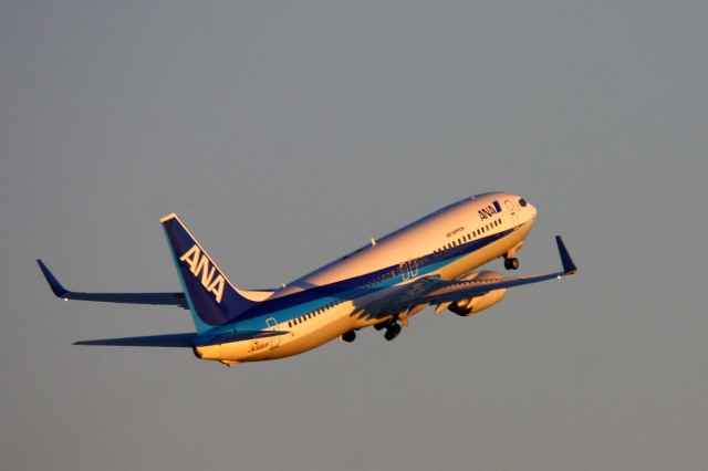 Hiro-hiroさんが、羽田空港で撮影した全日空 737-881の航空フォト(飛行機 写真・画像)