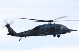 CYGNUS_20-1101さんが、米子空港で撮影した航空自衛隊 UH-60Jの航空フォト(飛行機 写真・画像)