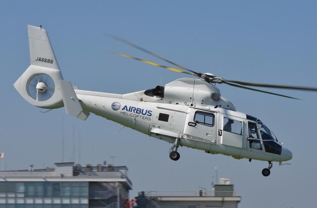 ブルーさんさんが、東京ヘリポートで撮影したユーロコプタージャパン AS365N2 Dauphin 2の航空フォト(飛行機 写真・画像)