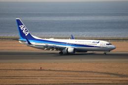 TAKAHIDEさんが、中部国際空港で撮影した全日空 737-881の航空フォト(飛行機 写真・画像)