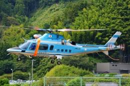ブルーさんさんが、静岡ヘリポートで撮影した兵庫県警察 A109E Powerの航空フォト(飛行機 写真・画像)