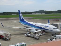 F.YUKIHIDEさんが、岡山空港で撮影した全日空 737-781の航空フォト(飛行機 写真・画像)