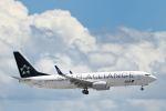 シグナス021さんが、羽田空港で撮影した全日空 737-881の航空フォト(飛行機 写真・画像)