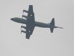 京成鐵@けいほんエアラインさんが、下総航空基地で撮影した海上自衛隊 P-3Cの航空フォト(飛行機 写真・画像)