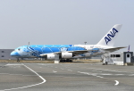 kix-booby2さんが、関西国際空港で撮影した全日空 A380-841の航空フォト(飛行機 写真・画像)