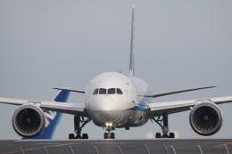 飛行機ゆうちゃんさんが、羽田空港で撮影した全日空 787-9の航空フォト(飛行機 写真・画像)
