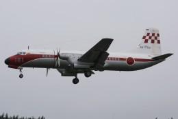 デルタおA330さんが、入間飛行場で撮影した航空自衛隊 YS-11-103FCの航空フォト(飛行機 写真・画像)