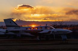 mameshibaさんが、成田国際空港で撮影した毎日新聞社 421B Golden Eagleの航空フォト(飛行機 写真・画像)
