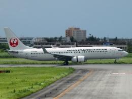 FT51ANさんが、宮古空港で撮影した日本トランスオーシャン航空 737-8Q3の航空フォト(飛行機 写真・画像)