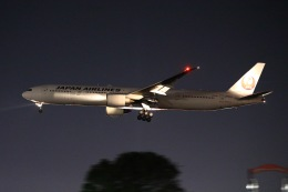YU✈︎さんが、福岡空港で撮影した日本航空 777-346/ERの航空フォト(飛行機 写真・画像)