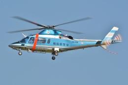 ブルーさんさんが、名古屋飛行場で撮影した福島県警察 A109E Powerの航空フォト(飛行機 写真・画像)