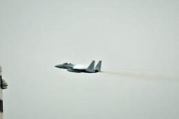 Dojalanaさんが、新千歳空港で撮影した航空自衛隊 F-15DJ Eagleの航空フォト(飛行機 写真・画像)
