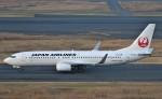 鉄バスさんが、羽田空港で撮影した日本航空 737-846の航空フォト(飛行機 写真・画像)