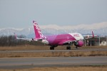 もぐ3さんが、新潟空港で撮影したピーチ A320-214の航空フォト(飛行機 写真・画像)