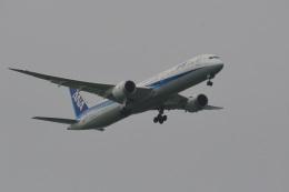 rangeroverさんが、成田国際空港で撮影した全日空 787-10の航空フォト(飛行機 写真・画像)