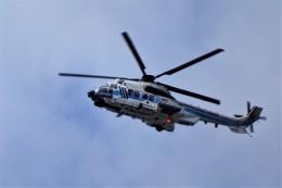 レドームさんが、羽田空港で撮影した海上保安庁 EC225LP Super Puma Mk2+の航空フォト(飛行機 写真・画像)