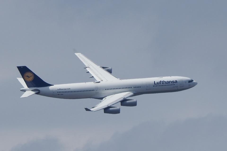 飛行機ゆうちゃんさんのルフトハンザドイツ航空 Airbus A340-300 (D-AIGL) 航空フォト