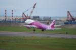kij niigataさんが、新潟空港で撮影したピーチ A320-214の航空フォト(飛行機 写真・画像)