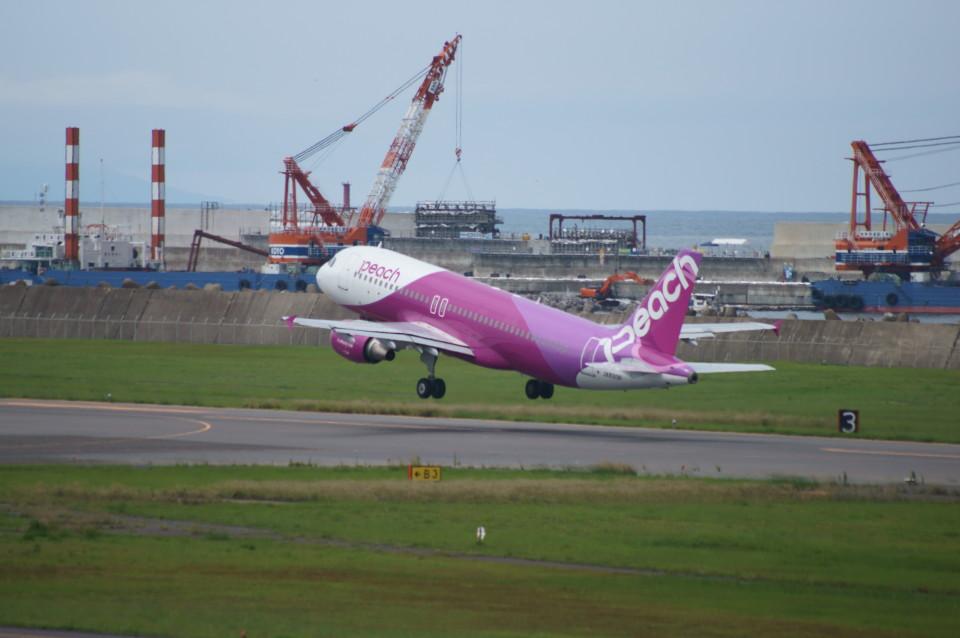 kij niigataさんのピーチ Airbus A320 (JA820P) 航空フォト