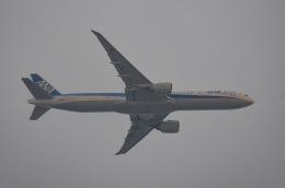 tamtam3839さんが、中部国際空港で撮影した全日空 777-381/ERの航空フォト(飛行機 写真・画像)