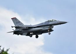RyuRyu1212さんが、横田基地で撮影したアメリカ空軍 F-16CM-50-CF Fighting Falconの航空フォト(飛行機 写真・画像)