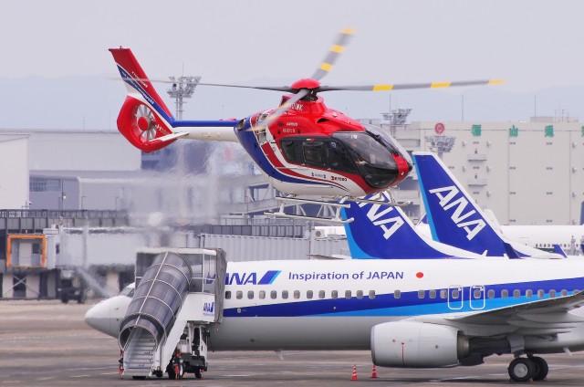 mild lifeさんが、伊丹空港で撮影した毎日新聞社 EC135T3の航空フォト(飛行機 写真・画像)