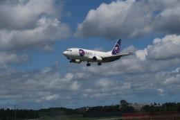 職業旅人さんが、成田国際空港で撮影したYTOカーゴ・エアラインズ 737-37Kの航空フォト(飛行機 写真・画像)