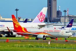 ちっとろむさんが、成田国際空港で撮影した海南航空 737-84Pの航空フォト(飛行機 写真・画像)