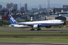 kaz787さんが、伊丹空港で撮影した全日空 777-381/ERの航空フォト(飛行機 写真・画像)