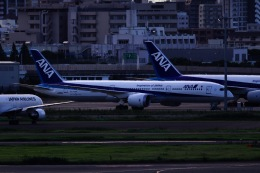 M.A.airphotoさんが、羽田空港で撮影した全日空 787-9の航空フォト(飛行機 写真・画像)