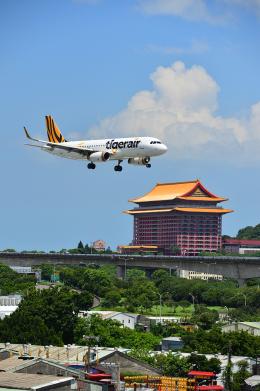 アカゆこさんが、台北松山空港で撮影したタイガーエア台湾 A320-232の航空フォト(飛行機 写真・画像)