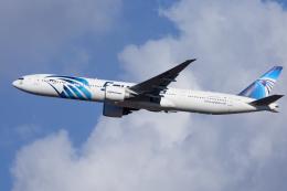 mameshibaさんが、成田国際空港で撮影したエジプト航空 777-36N/ERの航空フォト(飛行機 写真・画像)