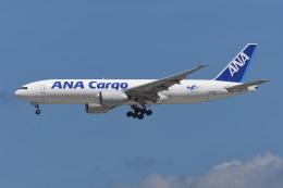よんろくさんが、成田国際空港で撮影した全日空 777-F81の航空フォト(飛行機 写真・画像)