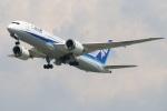 水月さんが、伊丹空港で撮影した全日空 787-8 Dreamlinerの航空フォト(飛行機 写真・画像)