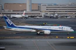 T.Kawaseさんが、羽田空港で撮影した全日空 787-9の航空フォト(飛行機 写真・画像)