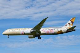 SGR RT 改さんが、成田国際空港で撮影したエティハド航空 787-9の航空フォト(飛行機 写真・画像)