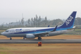 Hiro-hiroさんが、鹿児島空港で撮影した全日空 737-781の航空フォト(飛行機 写真・画像)