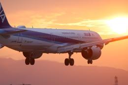 rokko2000さんが、伊丹空港で撮影した全日空 A321-272Nの航空フォト(飛行機 写真・画像)