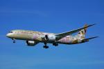 ちゃぽんさんが、成田国際空港で撮影したエティハド航空 787-9の航空フォト(飛行機 写真・画像)