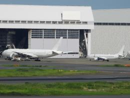 チャレンジャーさんが、羽田空港で撮影したノードスター航空 737-846の航空フォト(飛行機 写真・画像)