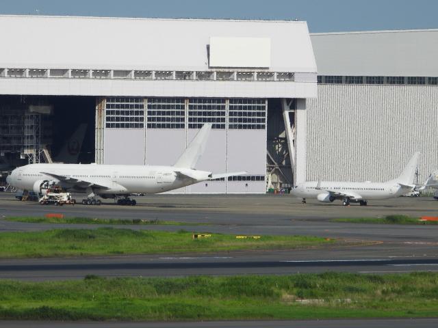 チャレンジャーさんが、羽田空港で撮影したノードスター航空 737-8K5の航空フォト(飛行機 写真・画像)