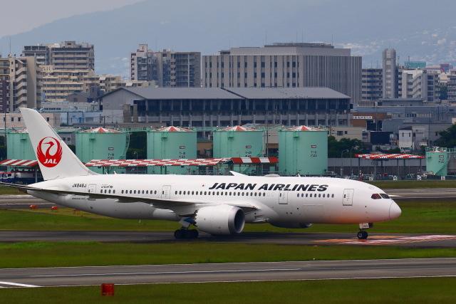 khideさんが、伊丹空港で撮影した日本航空 787-8 Dreamlinerの航空フォト(飛行機 写真・画像)